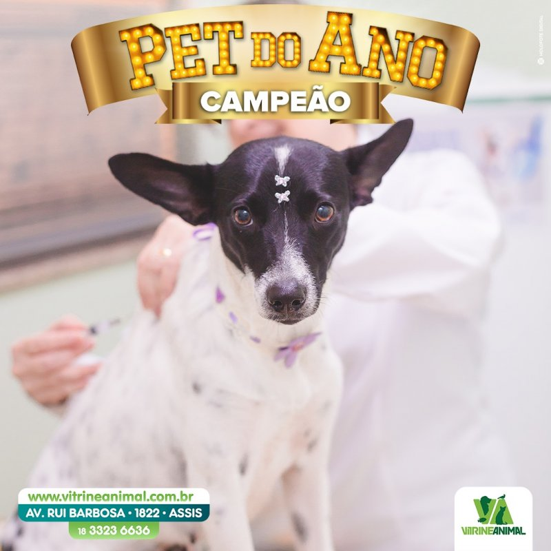 Costelinha da Etec Pet do Ano 2020